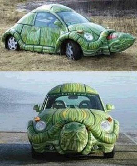 samochód żółw